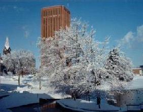 UMass Campus in the Winter